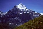 Wetterhorn  3701m