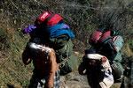 Träger ist in Nepal  ein Beruf; aber ein sehr schwerer!