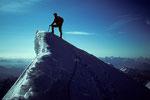Gipfel Pointe  Whymper  4184m