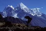 Thame 3780 m mit letztem Baum vor  Kangtega 6779m und Thamserku 6608 m