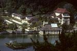 Kandy, die schönste Königsstadt mit See und Zahntempel