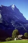 Eiger 3970 m Nordostwand von Dorengaden, Grindelwald