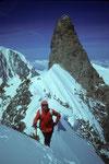 Vor dem Rochefortgrat mit Dent du Geant 4013m