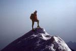 Gipfel Wetterhorn 3701 m