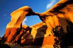 """Devils Garden  """"Metate Arch"""""""