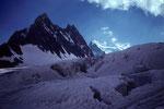 Glacier Blanc und fern Barre des Écrins 4102 m