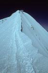 Mönch 4107 m Firngrat zum  Gipfel
