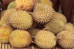 Durian - Früchte, eine tropische Köstlichkeit; aber nicht für jeden Touristen.