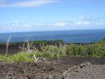 Route des coulées-sud sauvage-6-11-05