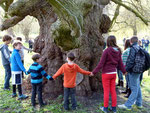 Führung im Naturschutzgebiet Unteres Odertal