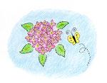 遅咲きの紫陽花