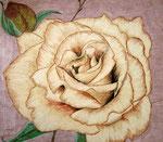 Brandy Rose