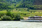 Sommelier trip Wachau