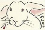 卯 ウサギ