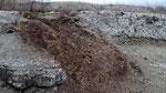Affleurements d'une infiltration basaltique