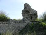 Ruine Hornstein