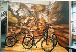 ... hier mit der passenden Graphik im Hintergrund auf der Fahrradmesse in Friedrichshafen