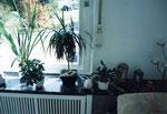 ...  sitzt als Verlängerung der Fensterbank neben dem original Marmor, der mir als Vorlage diente. ...