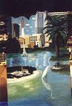 Diese Bilder sind  aus Collagen entstanden. Einmal die touristischen Highlites Floridas und ...