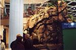 Ein Felsen ( Siehe ebenfalls unter Objekte/ Messen ) der auch als Wasserfall funktionierte.