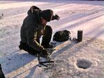Eis Forellen in Much Engeld