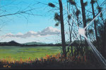 """""""Hofwiesen in Bückeburg"""" - Acryl auf LW - 60 x 40 cm"""