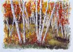 """Herbst im Birkenwald"" - Aquarell"