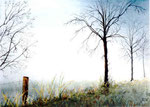 """Nebel über den Wiesen"" - 30 x 40 cm - Aquarell"