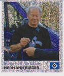 Nr 133 Hermann Rieger