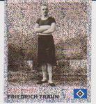 Nr 207 Friedrich Traun