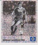 Nr 116 Bernd Wehmeyer