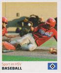 Nr 201 Baseball