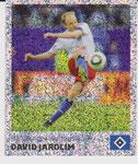Nr 186 David Jarolim