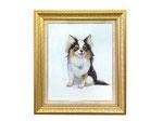 依頼肖像画 犬 写真のポーズを中心に描かせていただきました。F12サイズ