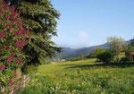 Sommer-Impressionen unserer Pension mit Umgebung