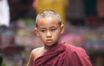 kiddie monk