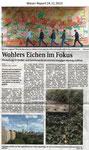 """""""Wohlers Eichen im Fokus"""" Weser Report 24.11.2013"""