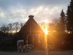Abendstimmung - der Frühling steht vor der Tür