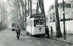 Fontainebleau-T-013 : Avenue Franklin Roosevelt. Motrice n°16. Cliché Jacques BAZIN. 26 décembre 1953