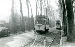 Fontainebleau-T-014 : Croisement des motrices 13 et 16, avenue Franklin Roosevelt. Cliché Jacques BAZIN. 26 décembre 1953