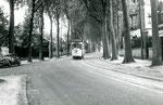 Fontainebleau-T-022 : Boulevard du Maréchal Leclerc. Motrice n°15. Cliché Jacques BAZIN. 19 juillet 1953