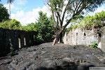 Savaii - Saleaula Lava Field