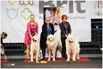 Echo de'Chien kennel Best in Show Breeder #3