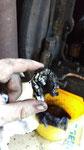Ansaugfilter der Ölpumpe gelöst und durch Zahnräder zerstört