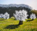 Le printemps de Vivaldi      Huile/Toile ( 46 / 38cm )      VENDUE