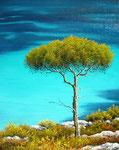 Le bleu de Sormiou      Huile/Toile ( 30 / 24cm )      VENDUE