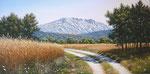 Sainte Victoire et champ de blé      Huile/Toile ( 60 / 30cm )      VENDUE