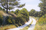 Chemin de campagne sur les Claparèdes      Huile/Toile ( 41 / 27cm )      COLLECTION PRIVEE
