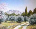 Sainte Victoire du printemps      Huile/Toile ( 46 / 38cm )      DISPONIBLE