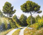 Escapade en Provence      Huile/Toile ( 41 / 33cm )      VENDUE